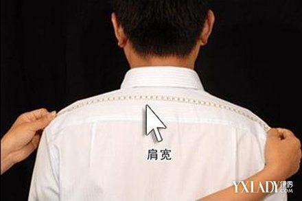 【图】女生肩宽标准图解女生肩宽衡量标准购衣不再烦恼